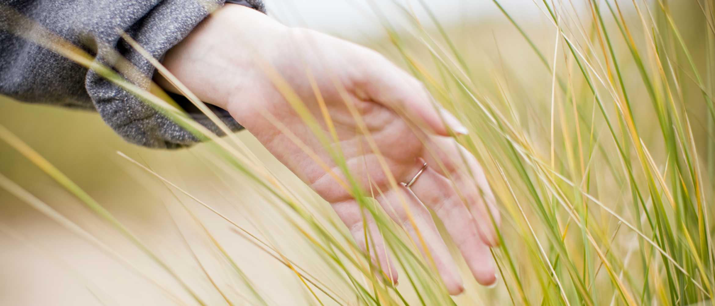 Mano tocando hierba en el campo