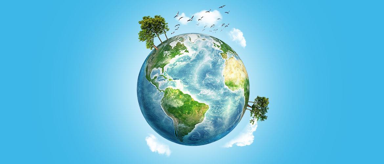 9 formas sencillas de ayudar al medio ambiente