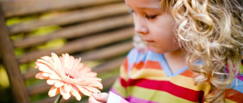 Niña rubia de pelo rizado quitando pétalos a una flor