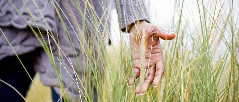 Mujer entre la hierba