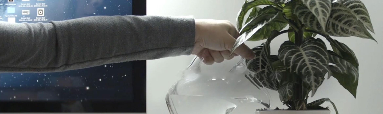 Persona regando planta