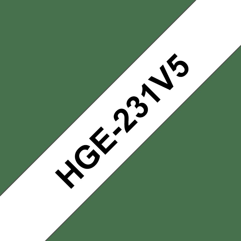 HGe231V5