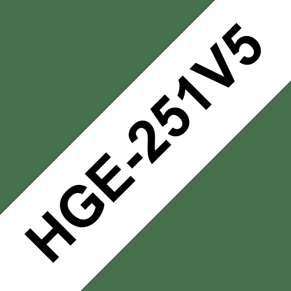 HGe251V5
