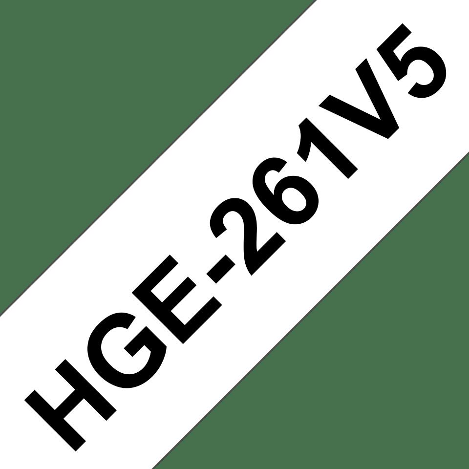 HGe261V5