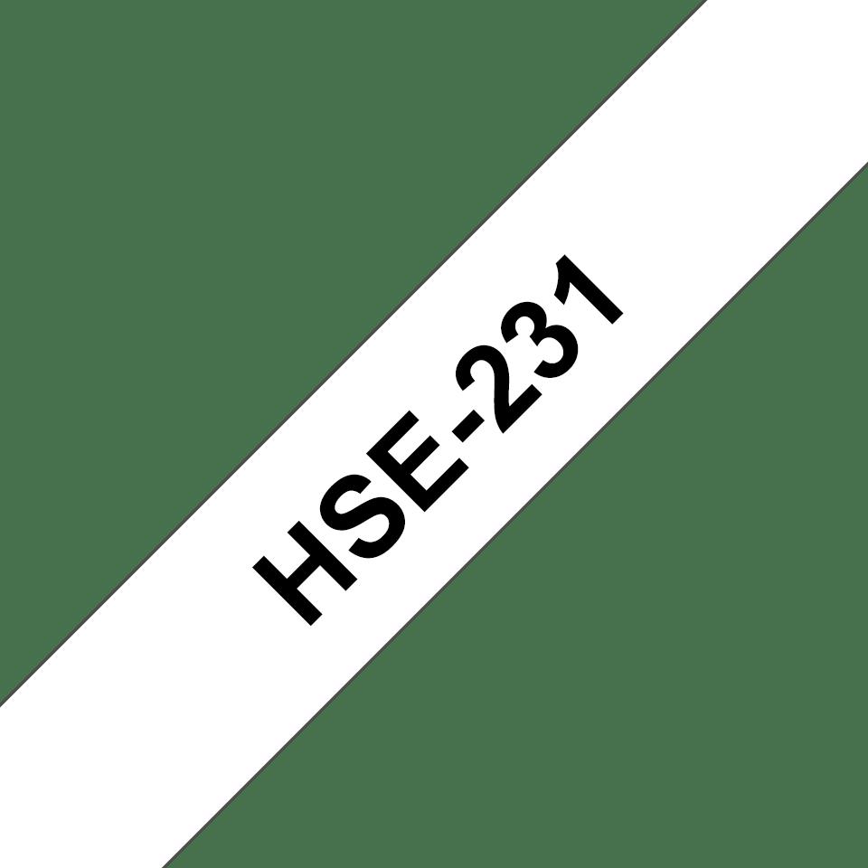 HSe231 3
