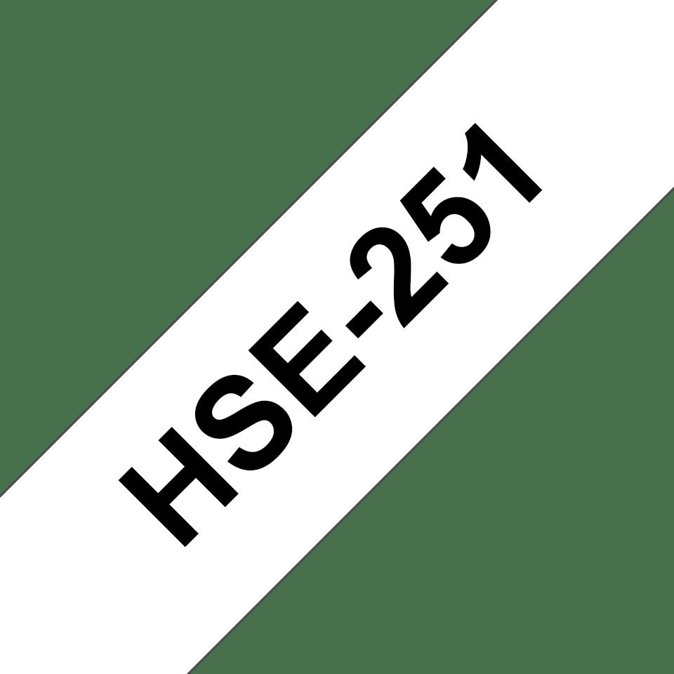 HSe251 3