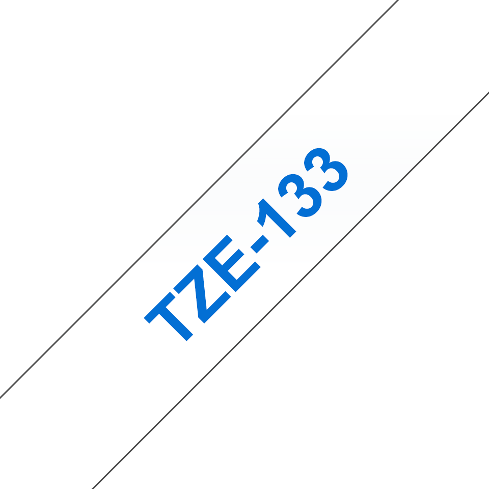 TZE133_main