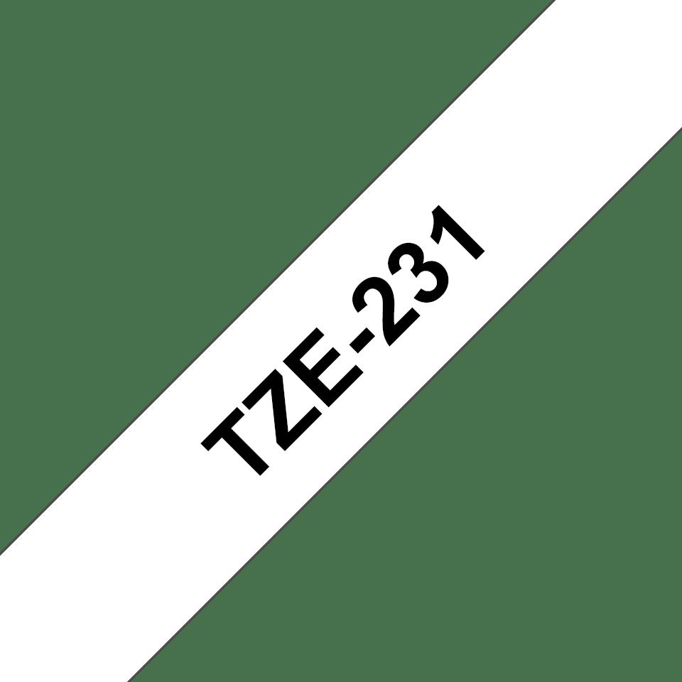 TZe231 3