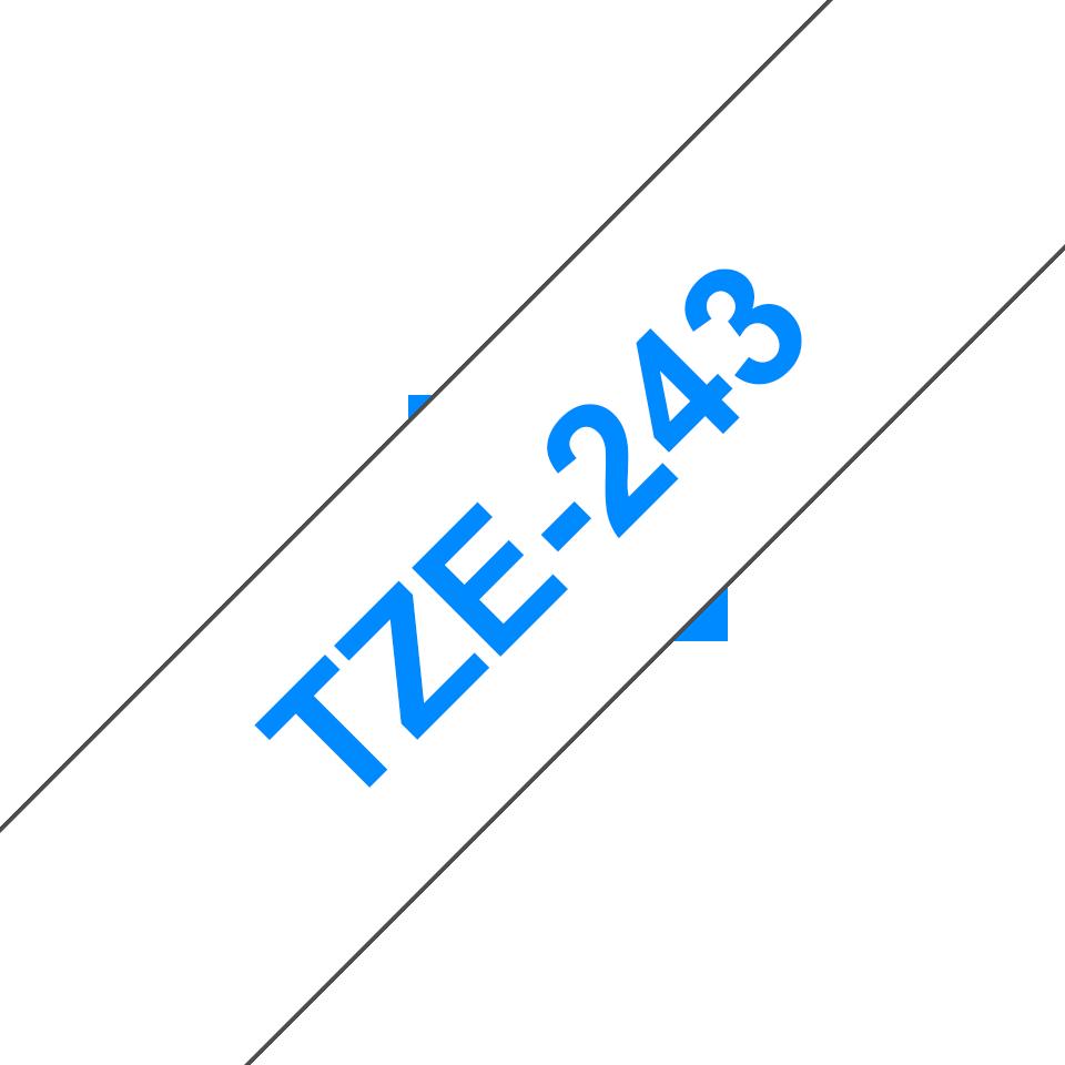 TZe243 3