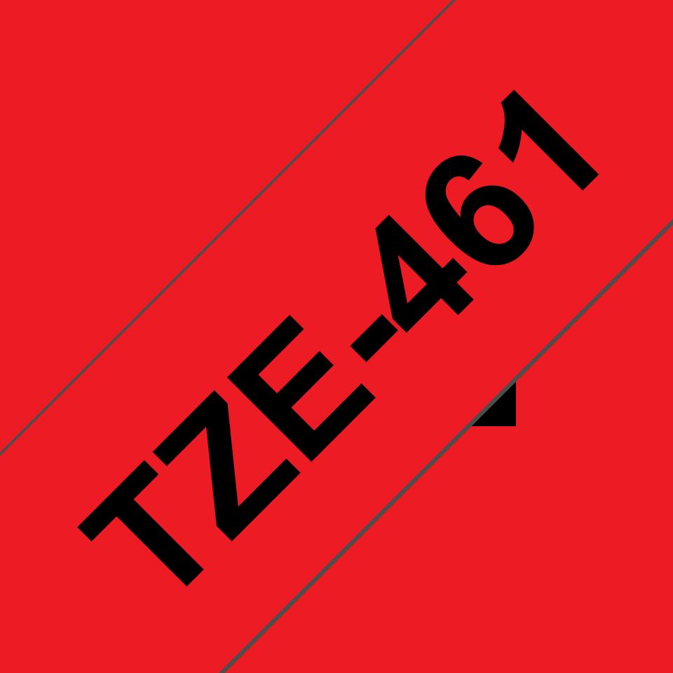 TZe461 2