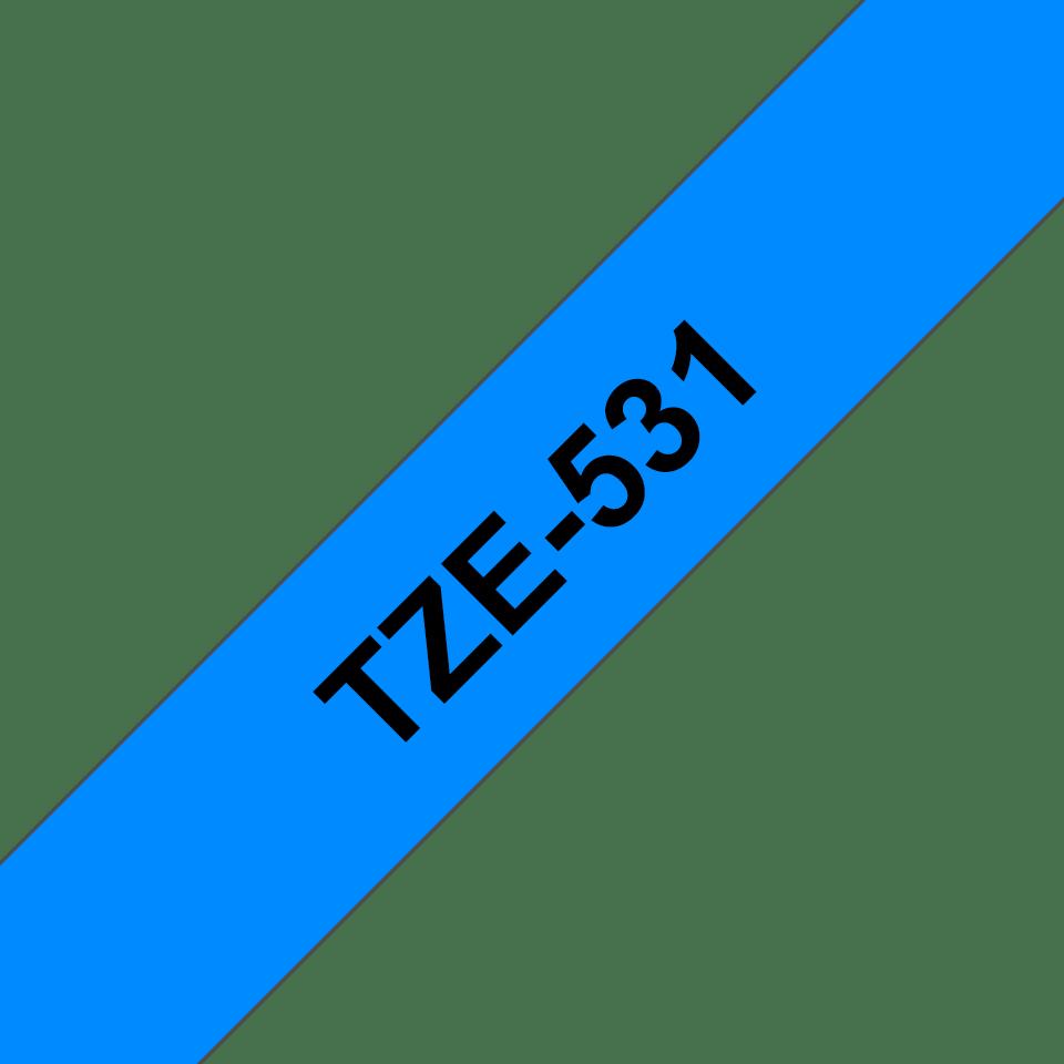 TZe531 2