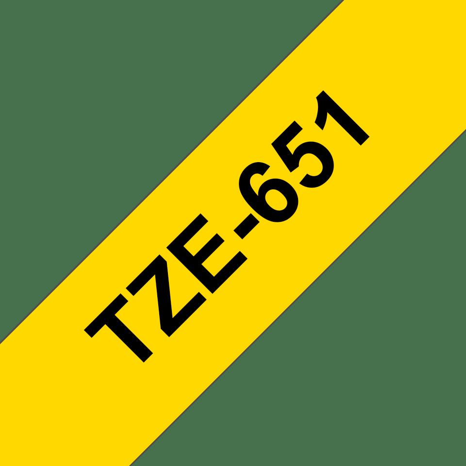 TZe651 2