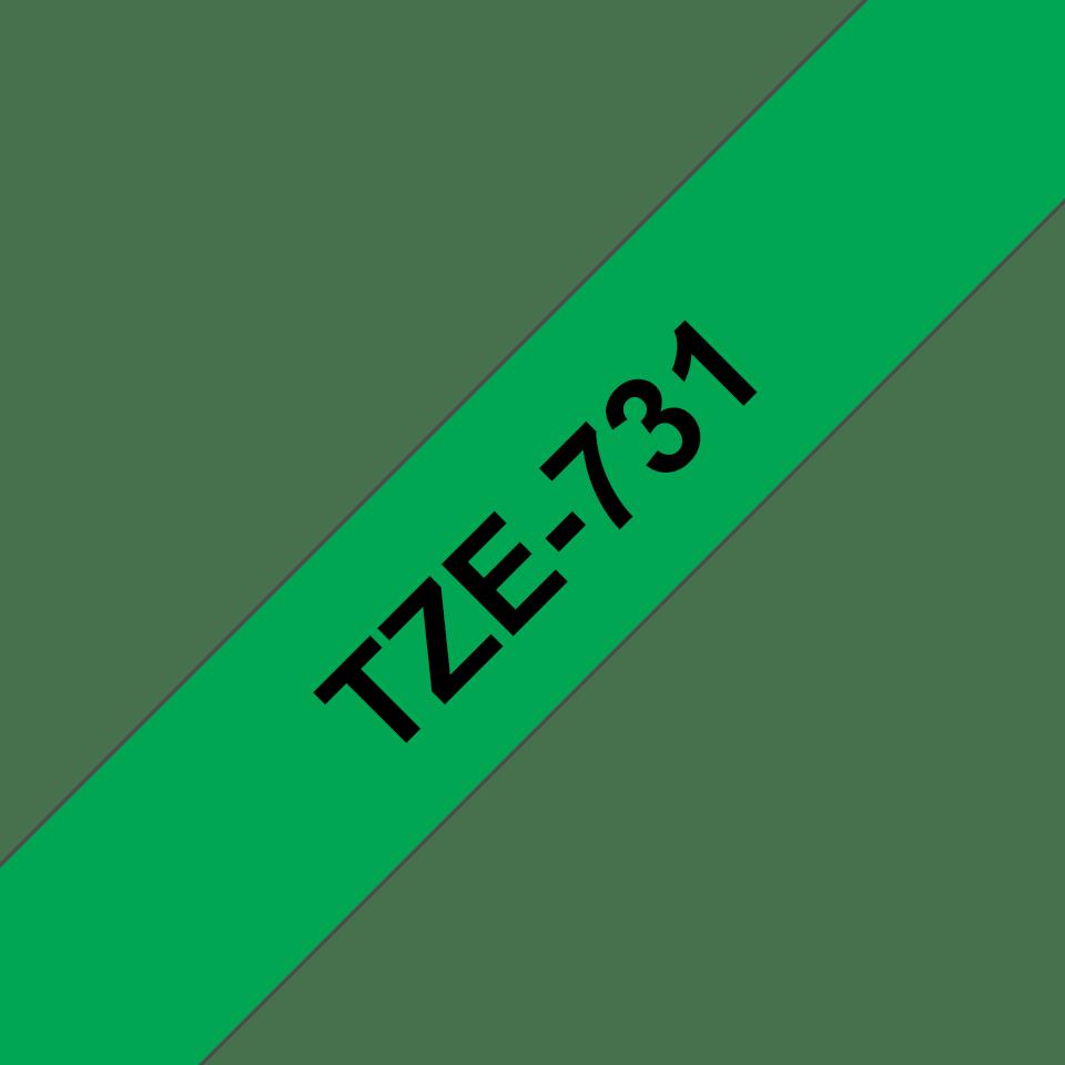 TZe731
