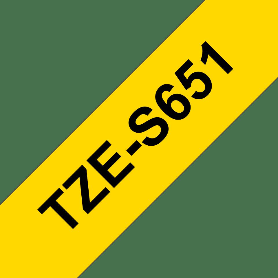 TZeS651 3